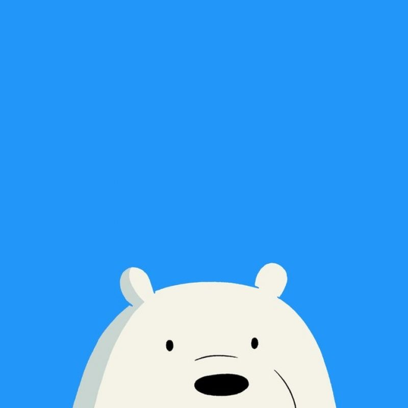 10 Latest We Bare Bears Iphone Wallpaper FULL HD 1080p For PC Desktop 2018 free download we bare bears icebear mobile wallpaper 1080x1920affentoast on 800x800