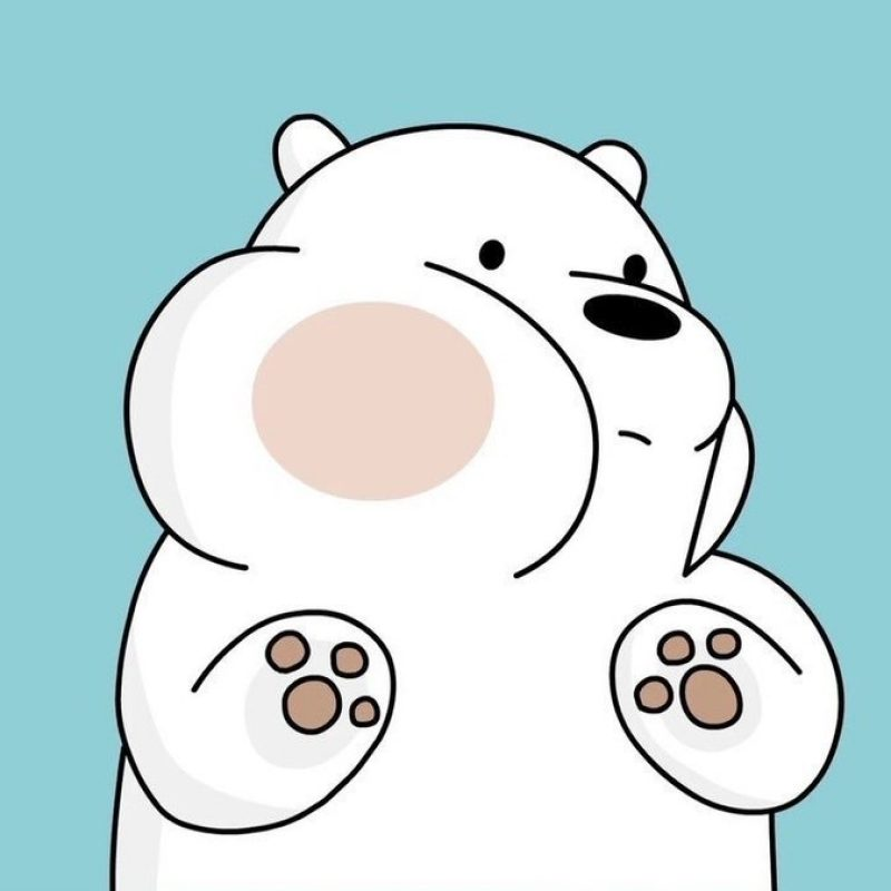 10 Top We Bare Bears Wallpaper FULL HD 1920×1080 For PC Background 2020 free download we bare bearsf09f929e on twitter we bare bears wallpapers f09f9295 800x800