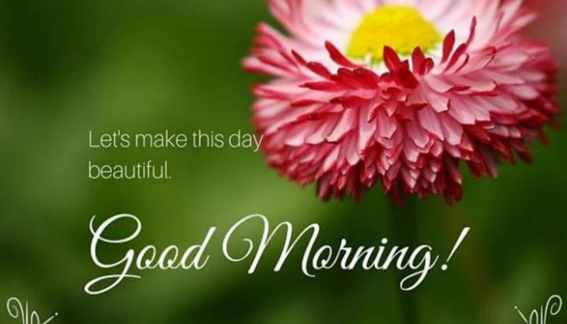 10 Most Popular Images For Good Morning FULL HD 1080p For PC Desktop 2018 free download whatsapp flooded with good morning greetings in india newshub 800x457