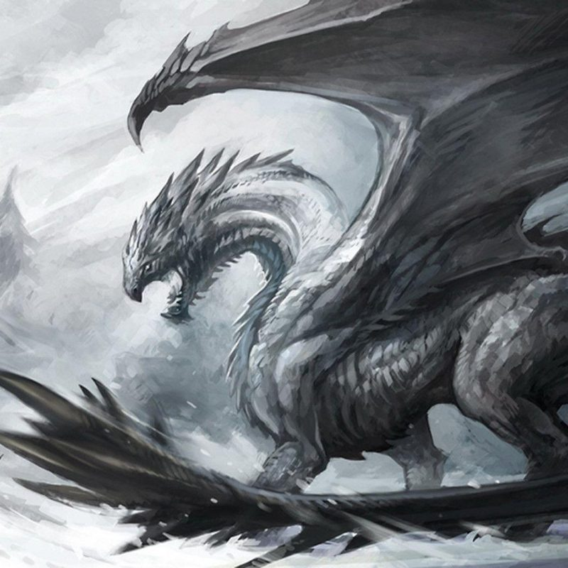 10 Latest Black And White Dragon Wallpaper FULL HD 1080p For PC Desktop 2018 free download white dragon wallpapers wallpaper cave 800x800