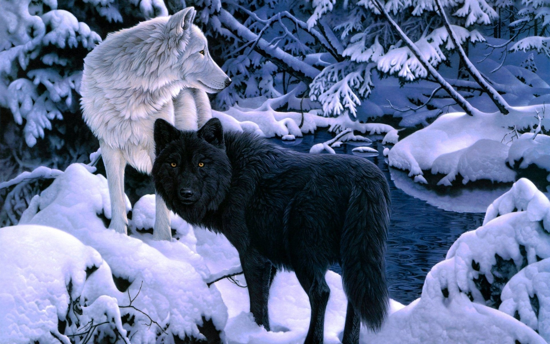 10 Most Popular Black And White Wolves Wallpaper Full Hd 19201080