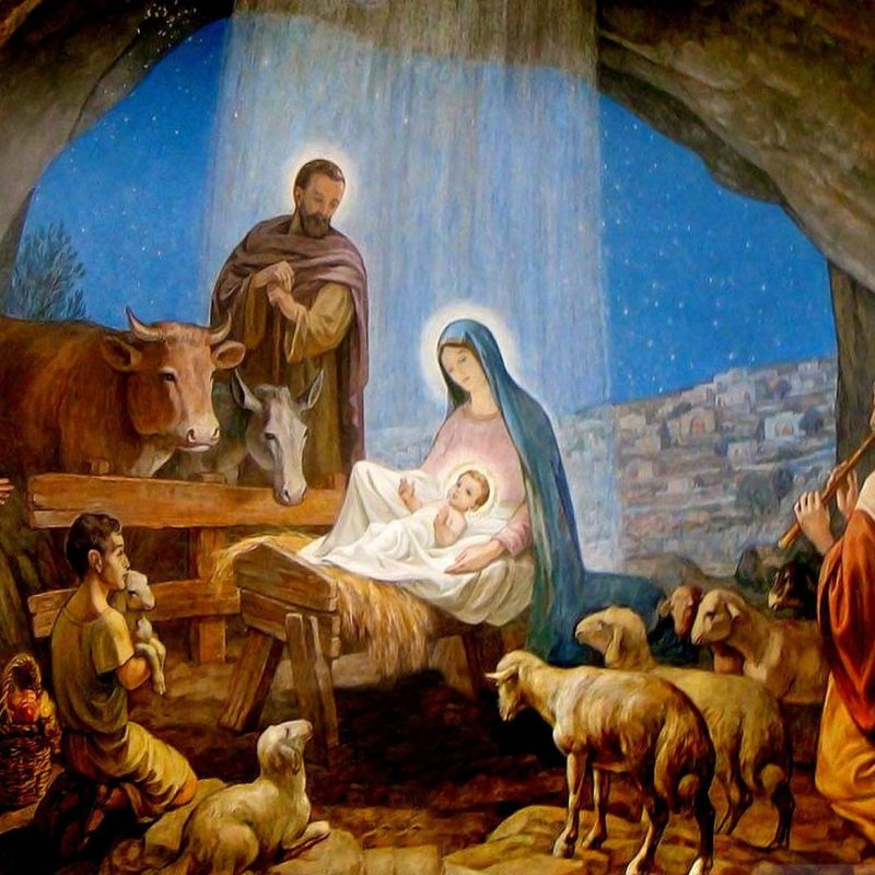 10 Latest Pictures Of The Birth Of Jesus FULL HD 1080p For PC Desktop 2018 free download why animals witnessed his birth ark animal blog 800x800