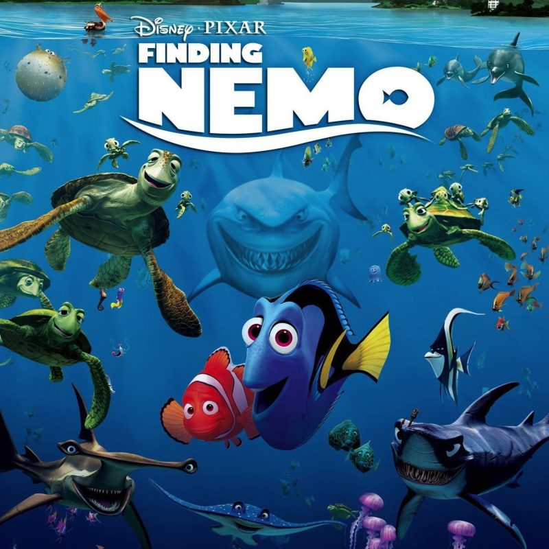 10 New Finding Nemo Movie Wallpaper FULL HD 1920×1080 For PC Background 2018 free download why is finding dory on netflix but nemo isnt finding nemo 800x800