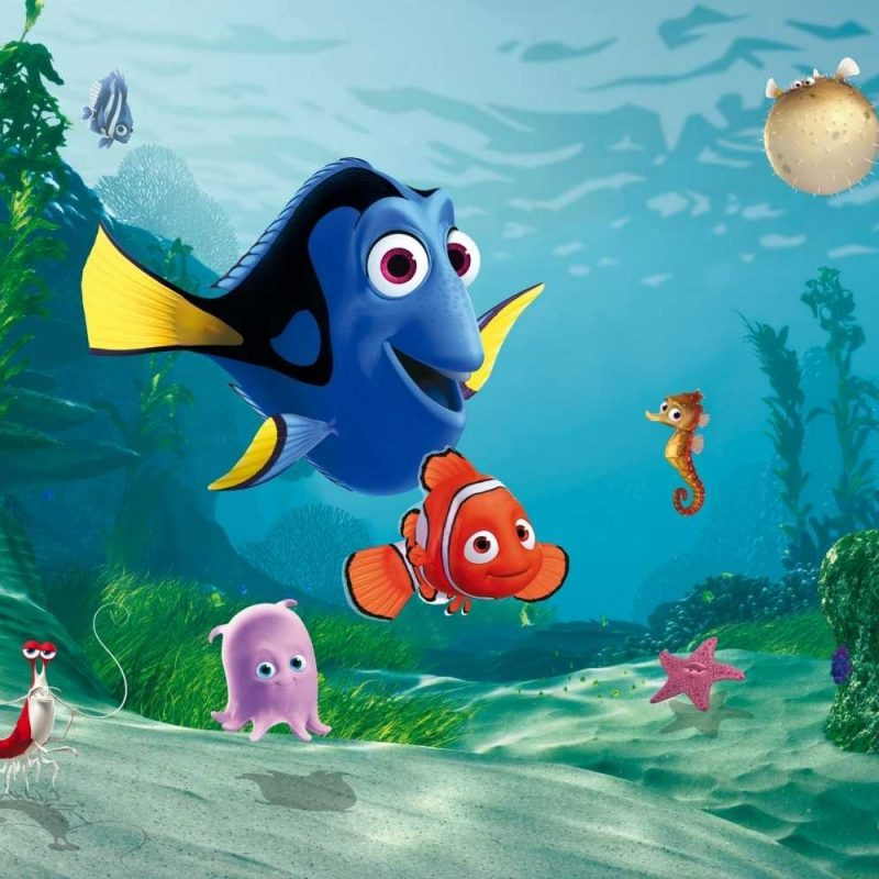10 Latest Finding Nemo Hd Wallpaper FULL HD 1080p For PC Desktop 2018 free download widescreen for life lessonslearned from finding nemo full hd images 800x800