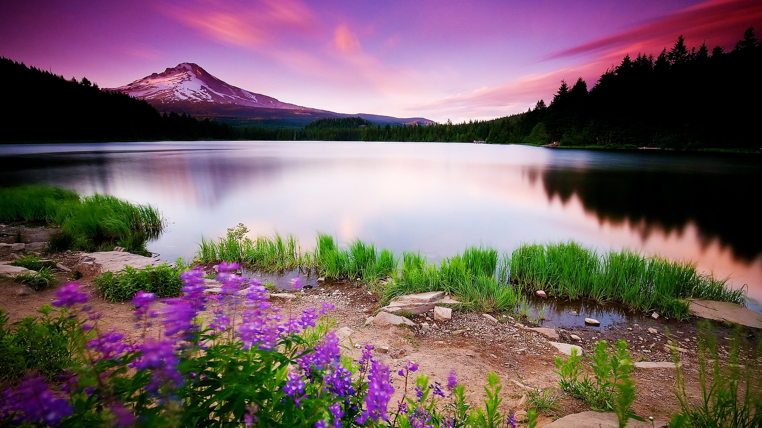 10 New Hd Widescreen Nature Backgrounds FULL HD 1080p For PC Background