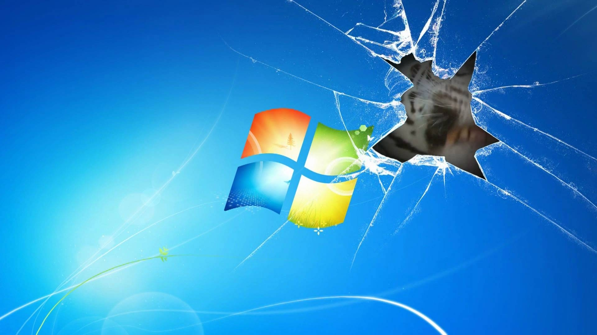 windows 7 wallpaper animated tiger on broken screen - youtube