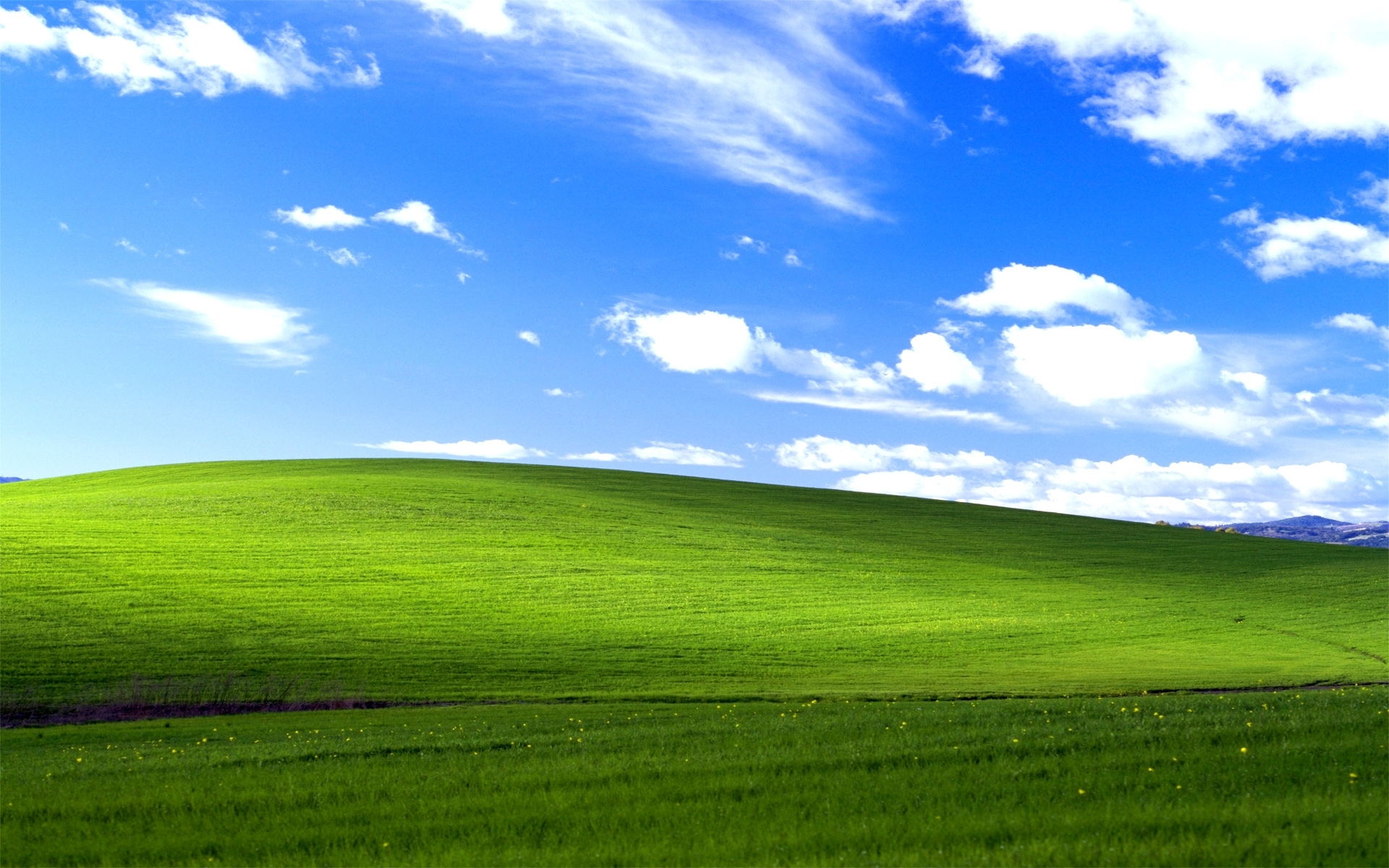 windows xp bliss wallpapers | hd wallpapers | id #11640