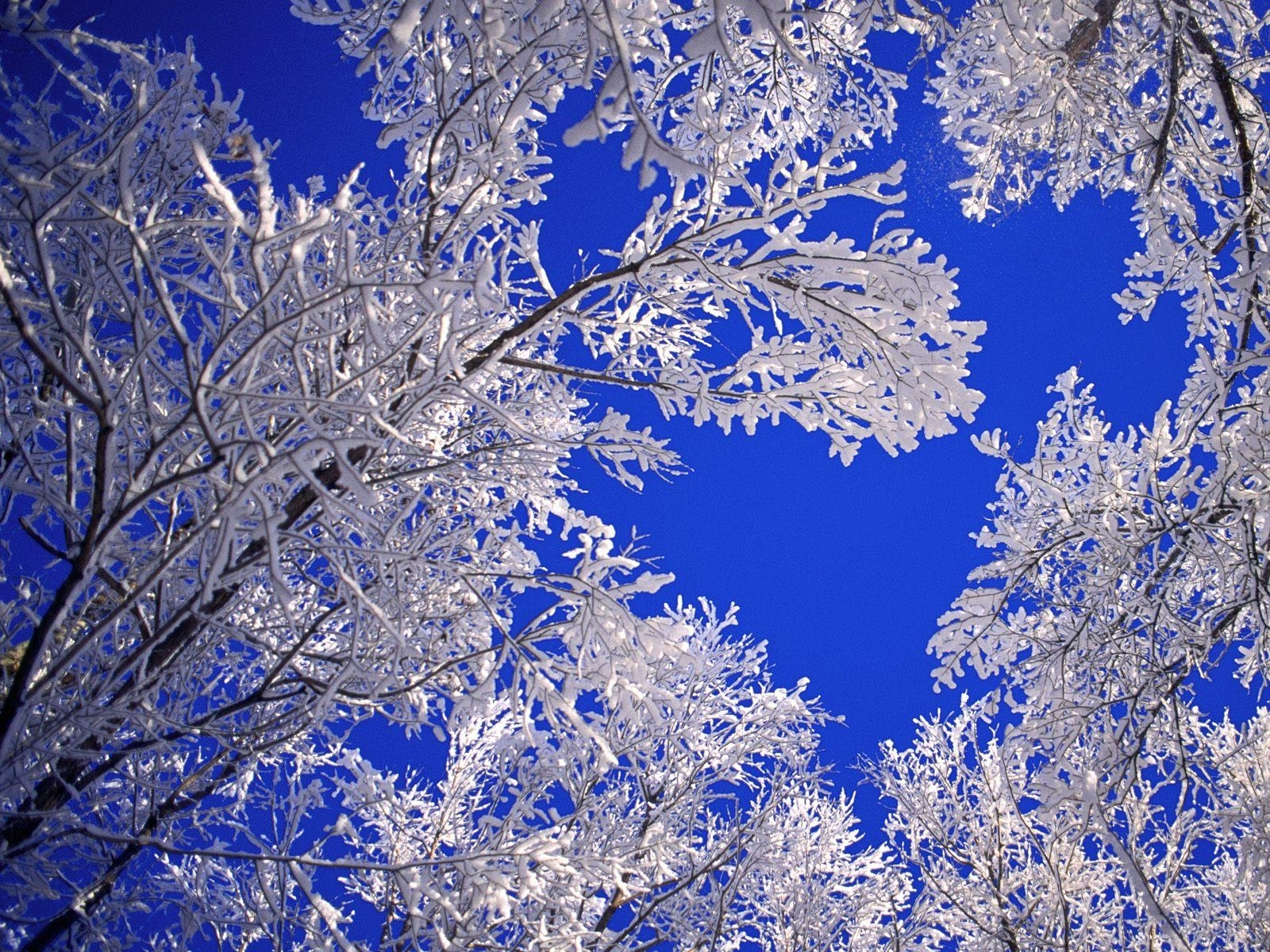 winter backgrounds scenes group | hd wallpapers | pinterest