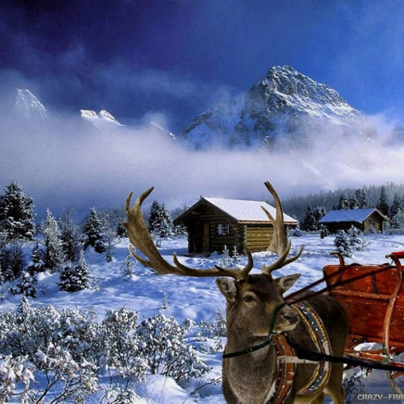 10 New Christmas Winter Scenes Wallpaper FULL HD 1080p For PC Background 2018 free download winter christmas wallpapers 2 crazy frankenstein 800x800