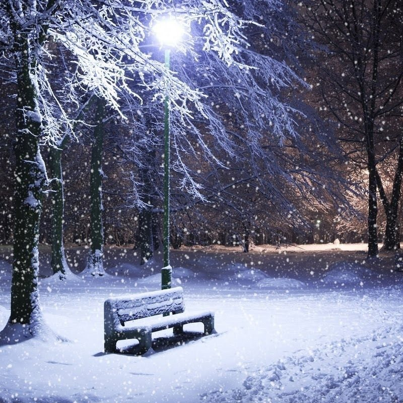 10 New Free Animated Winter Desktop Wallpaper FULL HD 1920×1080 For PC Background 2020 free download winter computer wallpapers group 91 800x800