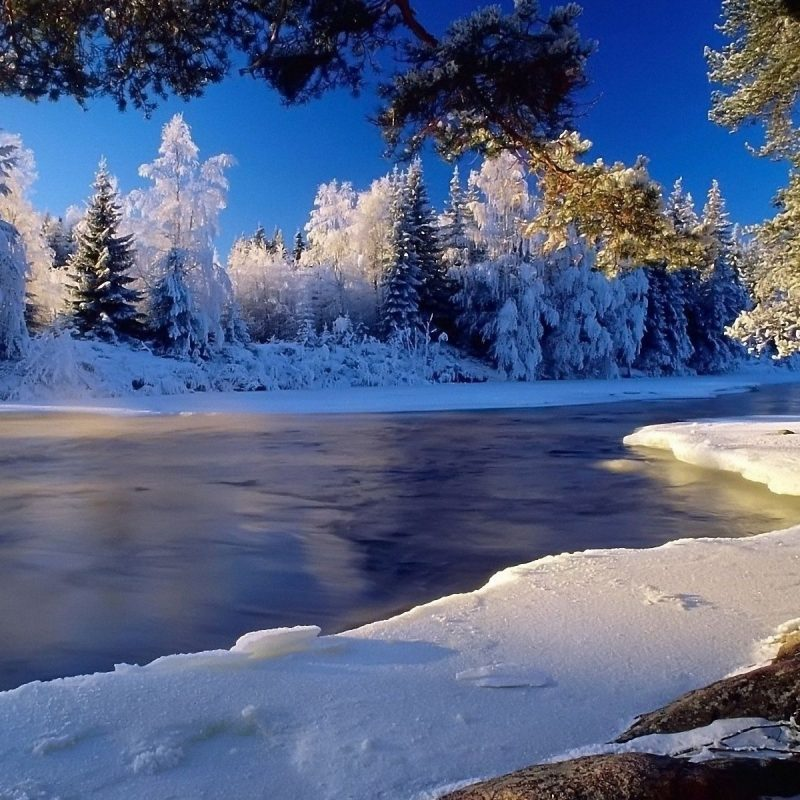 10 Best Winter Landscape Desktop Wallpaper FULL HD 1080p For PC Desktop 2020 free download winter landscape wallpaper hd media file pixelstalk 2 800x800