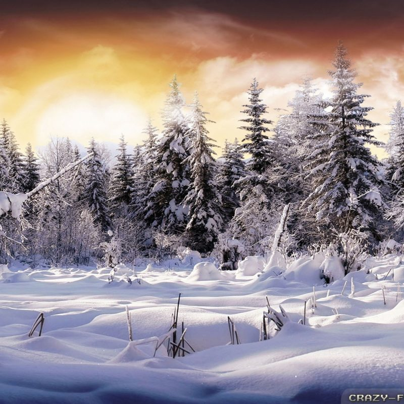 10 Most Popular Beautiful Winter Landscapes Wallpapers FULL HD 1080p For PC Desktop 2018 free download winter landscape wallpapers 3 crazy frankenstein 800x800