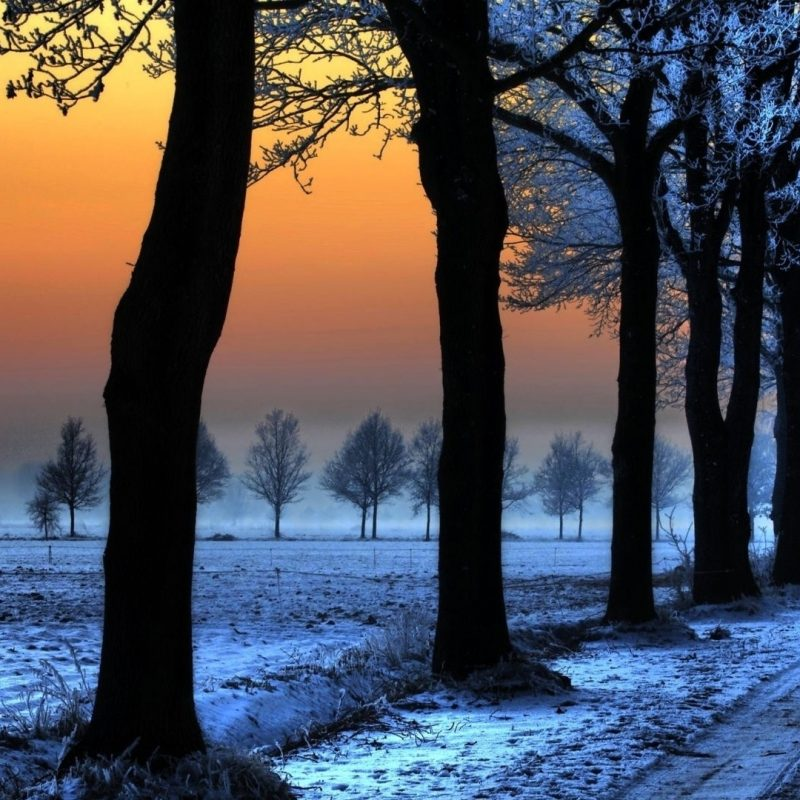 10 Top Winter Landscape Wallpaper Hd FULL HD 1080p For PC Desktop 2018 free download winter landscape with orange sky e29da4 4k hd desktop wallpaper for 4k 800x800