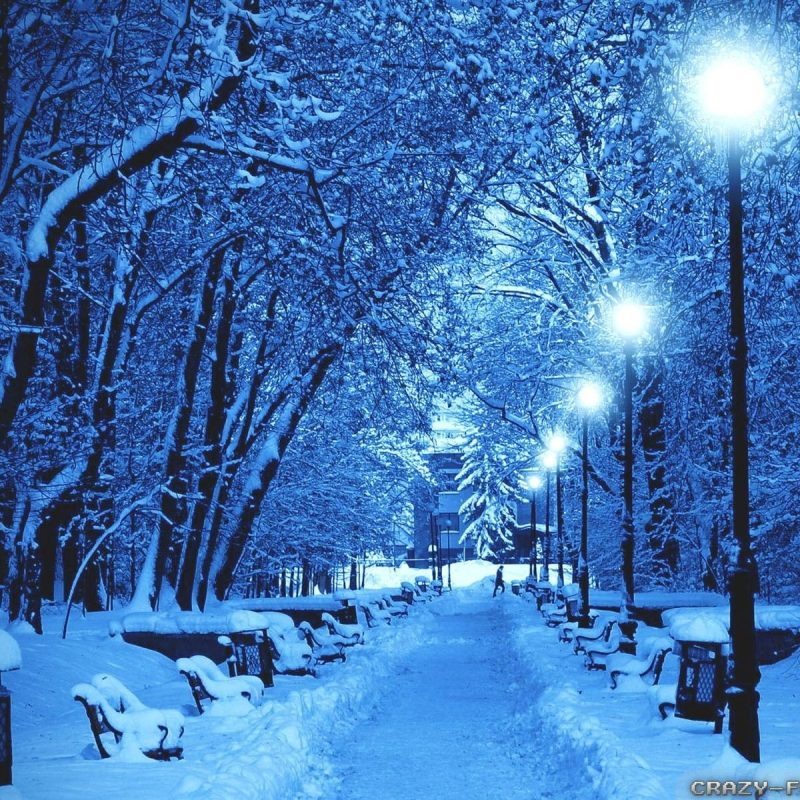 10 Latest Free Winter Scene Screensavers FULL HD 1920×1080 For PC Background 2020 free download winter nature scenes wallpapers group 68 800x800