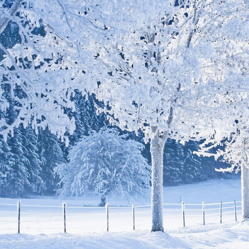 10 Most Popular Beautiful Snow Nature Wallpapers FULL HD 1920×1080 For PC Desktop 2018 free download winter nature snow beautiful lovely landscape landscapes wallpaper 800x800