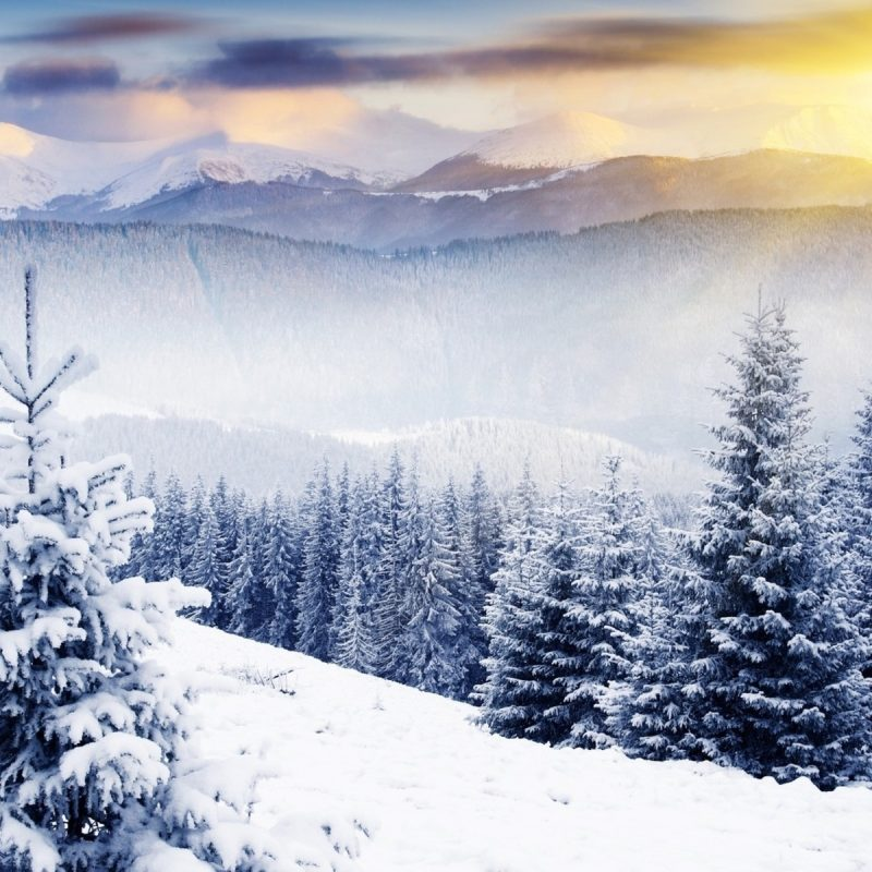 10 Most Popular Winter Scenes Wallpaper For Computer FULL HD 1080p For PC Desktop 2018 free download winter scenery 18724 1920x1200 px hdwallsource 800x800