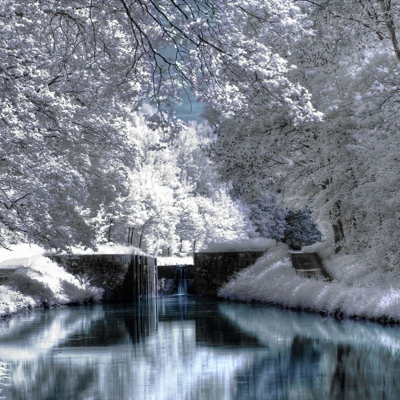 10 Most Popular Winter Scenes Wallpaper For Computer FULL HD 1080p For PC Desktop 2018 free download winter scenery pictures 33759 1280x800 px hdwallsource 800x800