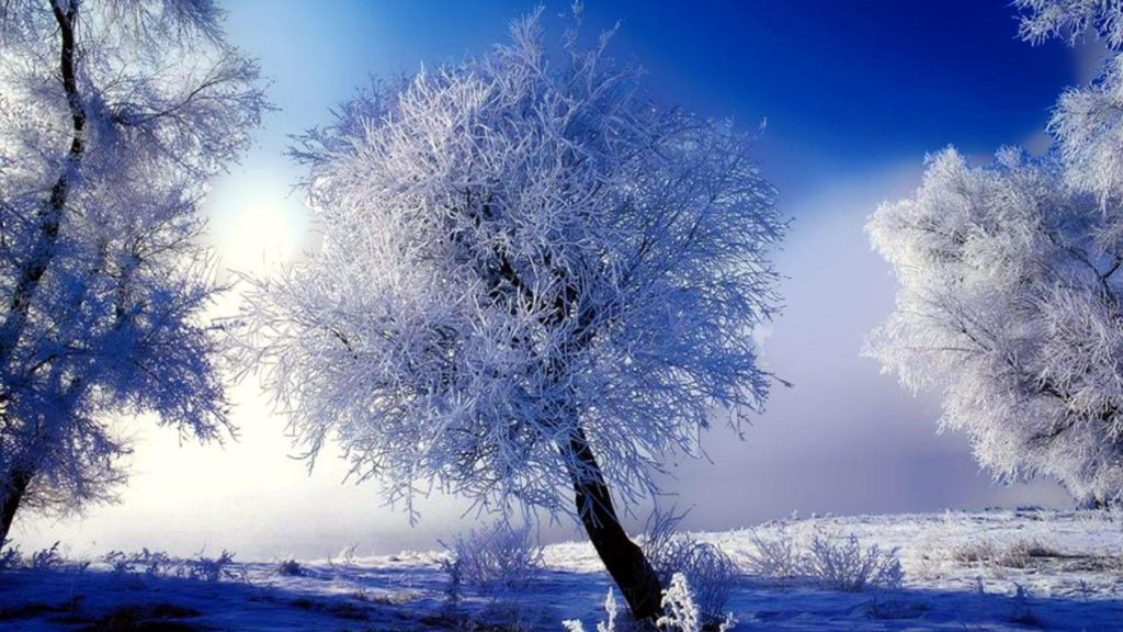 10 Most Popular Winter Scenes Desktop Background FULL HD 1920×1080 For PC Desktop 2018 free download winter scenes desktop backgrounds gallery 79 plus pic wpw509582 1024x576
