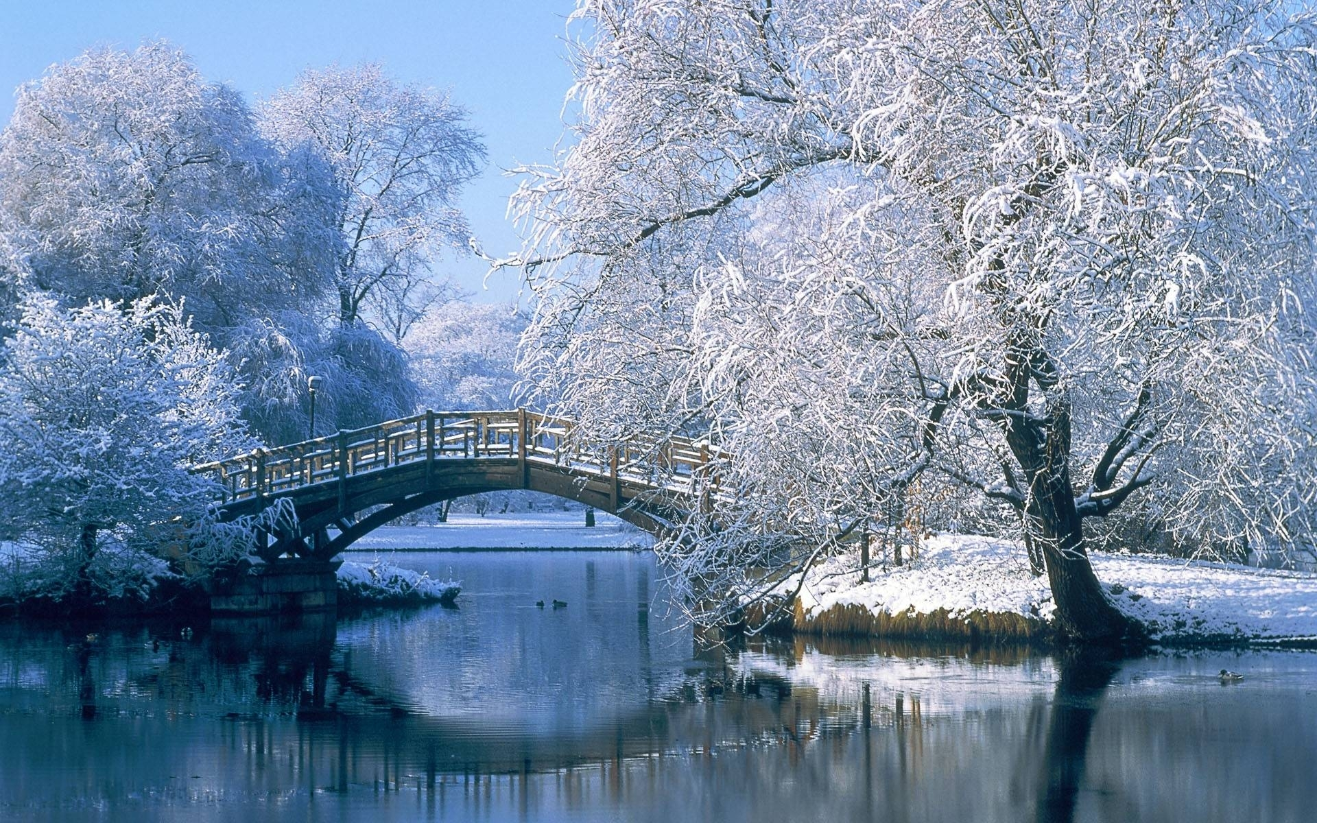 winter scenes desktop backgrounds group (79+)