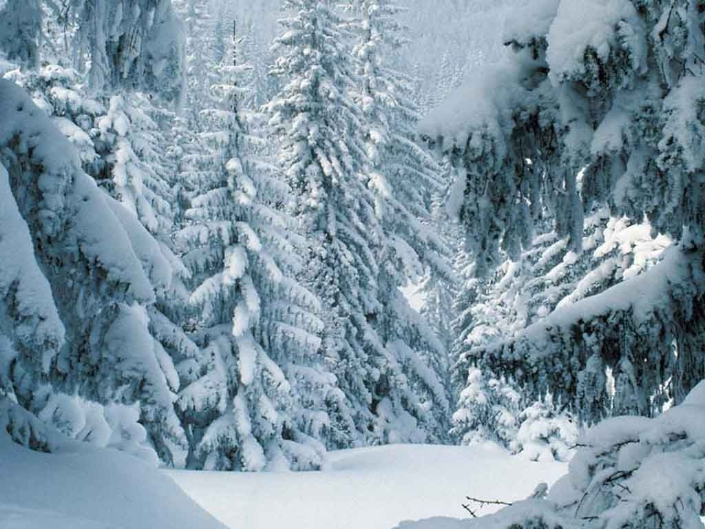 10 Latest Winter Scenes Wallpapers Free FULL HD 1920×1080 For PC Background