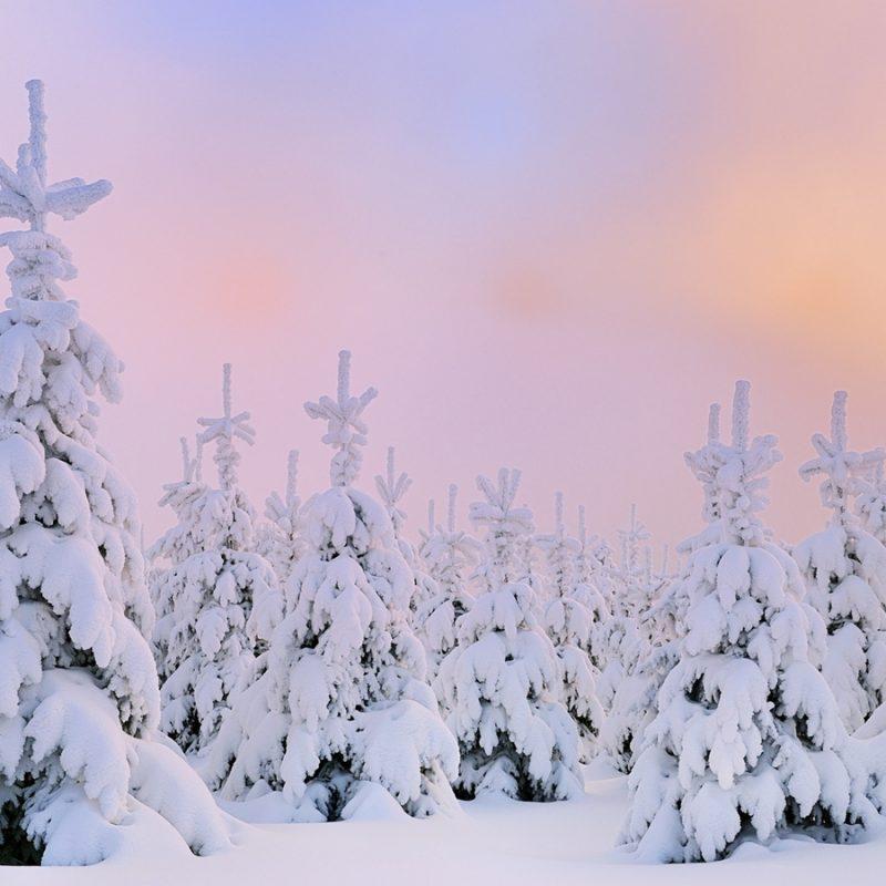 10 Best Snow Desktop Wallpaper Hd FULL HD 1080p For PC Background 2018 free download winter snow desktop wallpaper hd 49817 dongxue series landscape 800x800