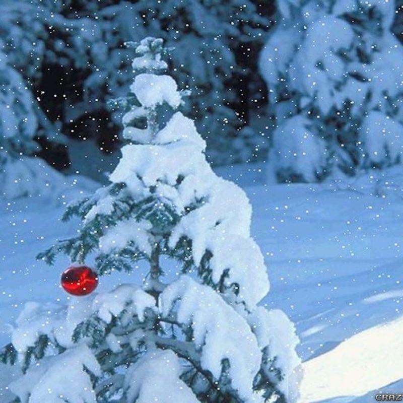 10 Latest Winter Scene Screensaver Free FULL HD 1080p For PC Desktop 2020 free download winter snow scenes wallpapers group 92 2 800x800