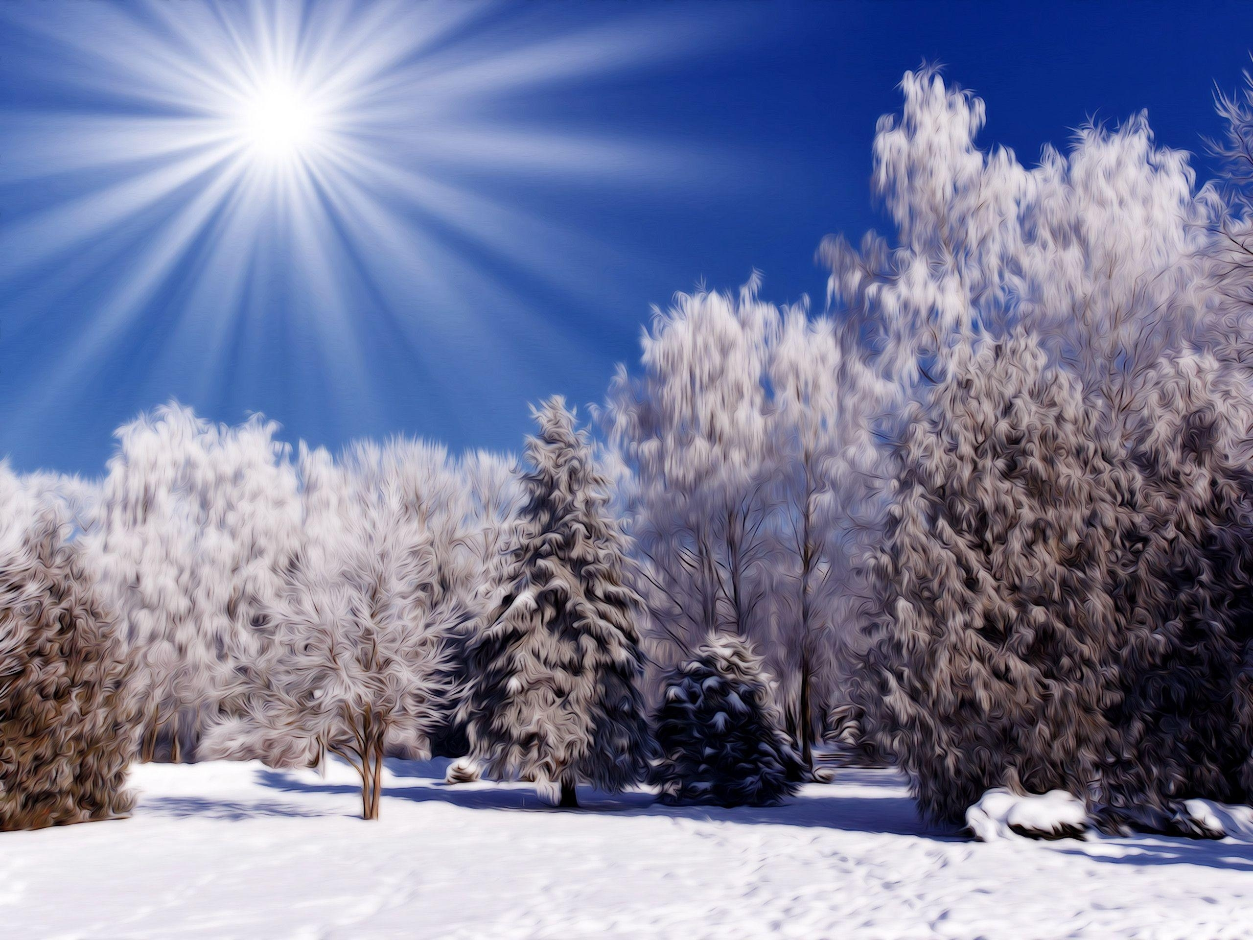 winter snow scenes wallpapers - wallpaper cave