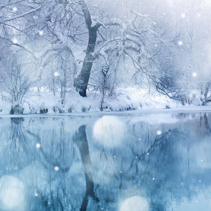 10 New Snow Wallpaper Hd Widescreen FULL HD 1080p For PC Background 2018 free download winter snowfall e29da4 4k hd desktop wallpaper for 4k ultra hd tv e280a2 dual 1 800x800