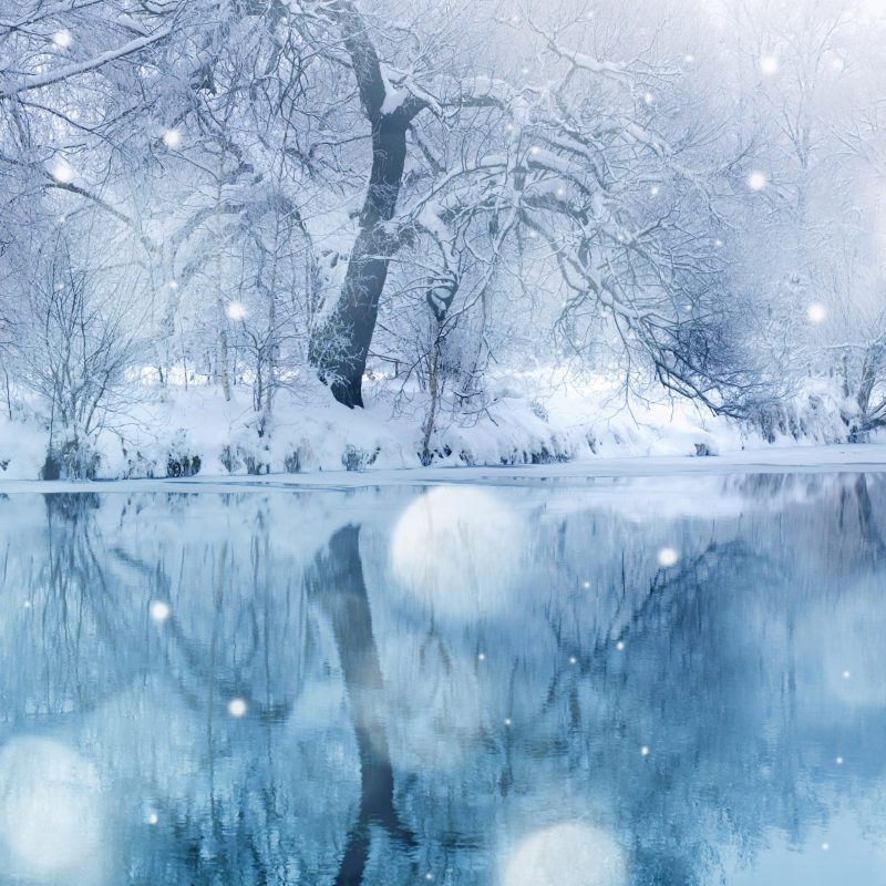 10 Best Winter Nature Wallpapers High Resolution FULL HD 1080p For PC Background 2018 free download winter snowfall e29da4 4k hd desktop wallpaper for 4k ultra hd tv e280a2 dual 4 800x800