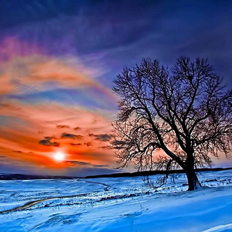 10 Top Winter Sunset Desktop Backgrounds FULL HD 1080p For PC Background 2018 free download winter sunset desktop wallpapers desktop background 800x800
