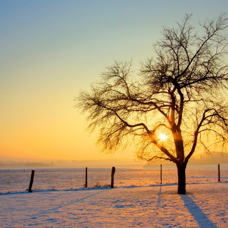 10 Top Winter Sunset Desktop Backgrounds FULL HD 1080p For PC Background 2018 free download winter sunset e29da4 4k hd desktop wallpaper for 4k ultra hd tv e280a2 wide 800x800