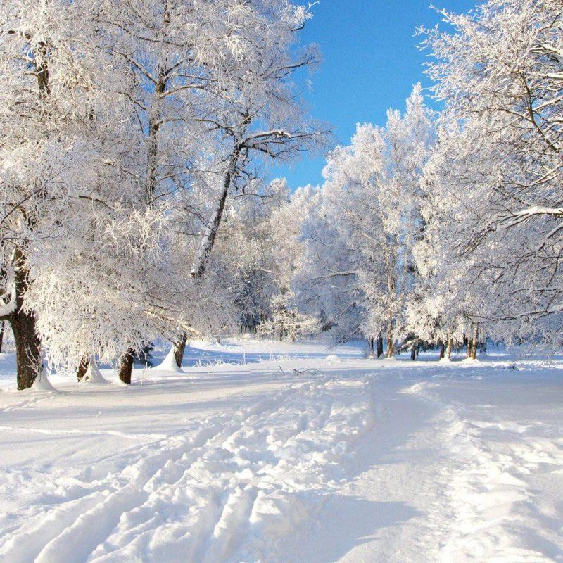 10 Best Winter Screensavers And Wallpaper FULL HD 1080p For PC Desktop 2018 free download winter wallpapers for computer desktop group 85 800x800