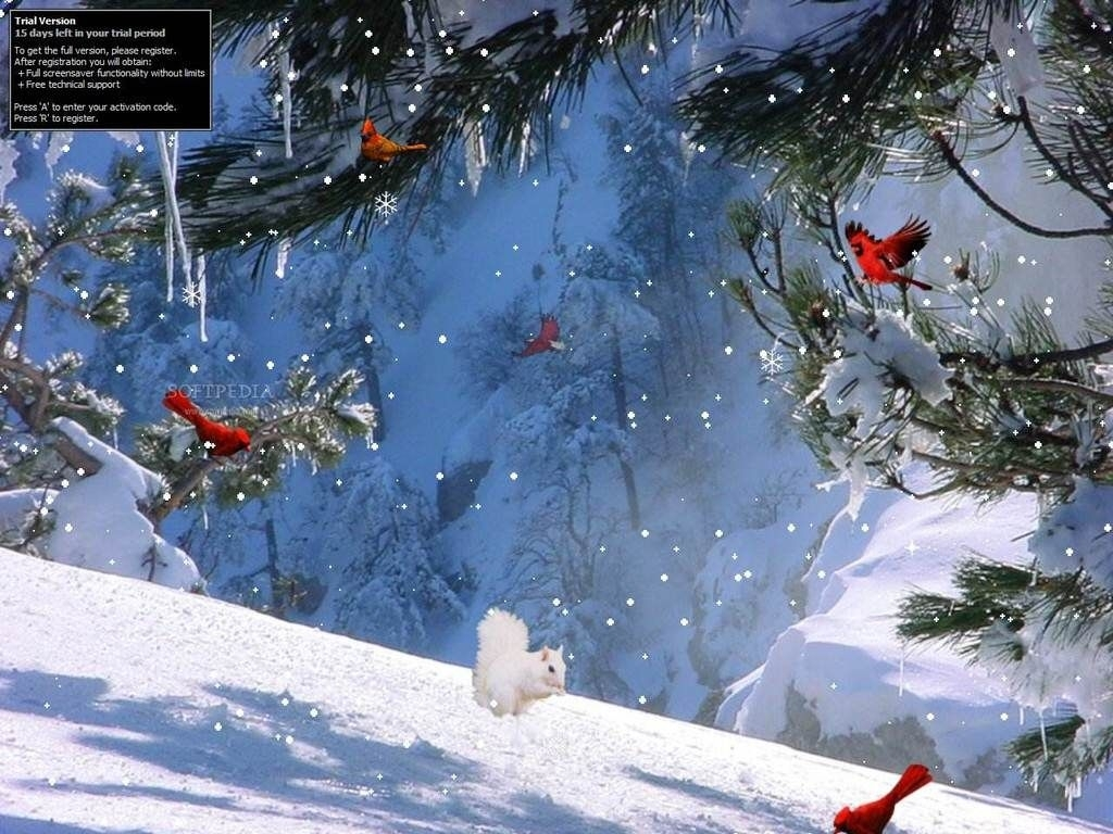 winter wallpapers full hd group 1920×1080 winter screen wallpapers