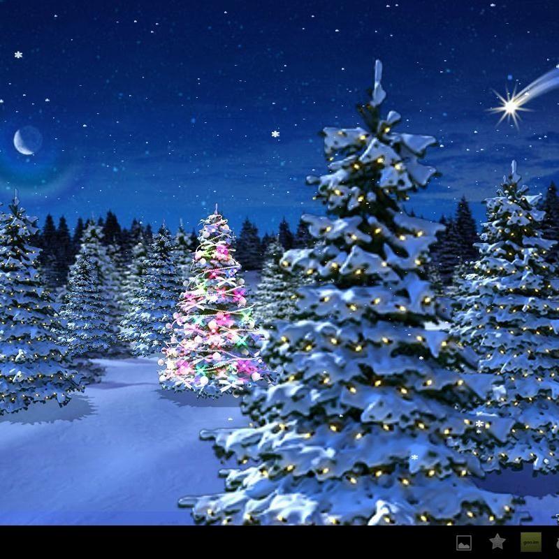 10 Latest Winter Wonderland Screensavers Free FULL HD 1920×1080 For PC Desktop 2021 free download winter wonderland christmas screensaver festival collections 800x800
