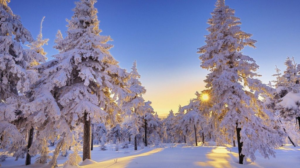 10 Best Winter Wonderland Desktop Background FULL HD 1080p For PC Background 2018 free download winter wonderland desktop backgrounds wallpaper cave 1024x576
