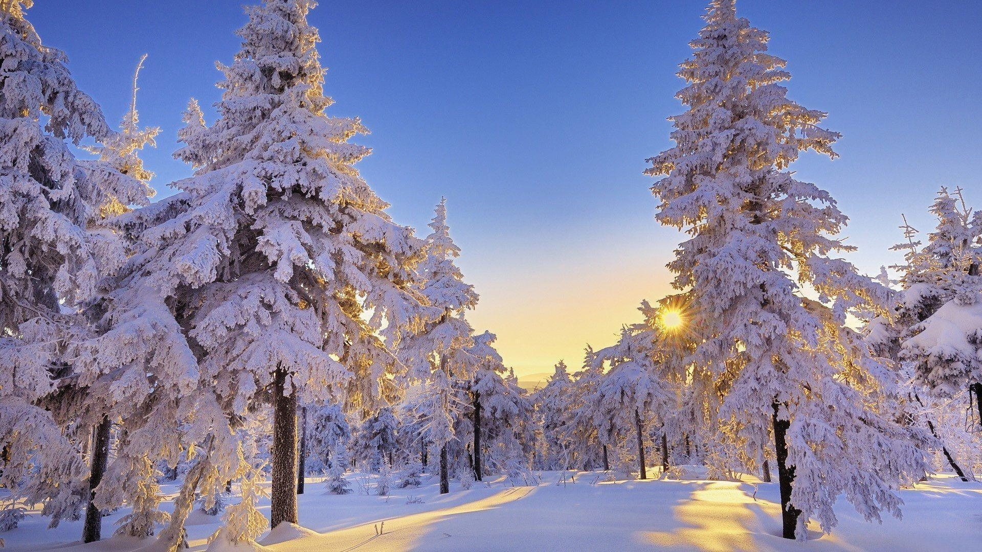 10 Best Winter Wonderland Desktop Background FULL HD 1080p For PC Background