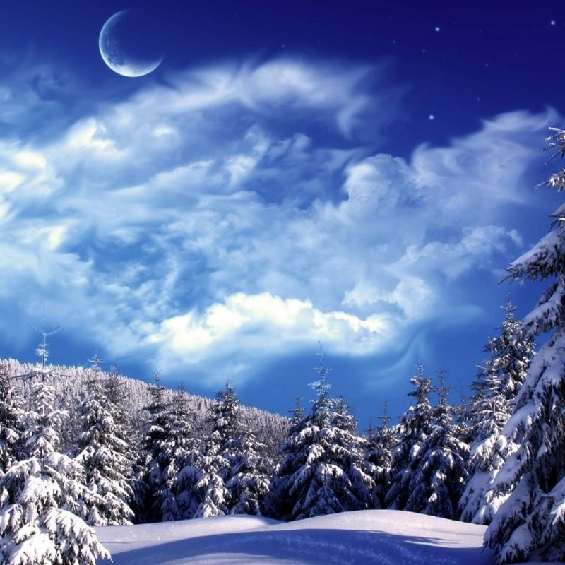 10 Latest Winter Wonderland Screensavers Free FULL HD 1920×1080 For PC Desktop 2018 free download winter wonderland desktop backgrounds wallpaper wonderland 800x800