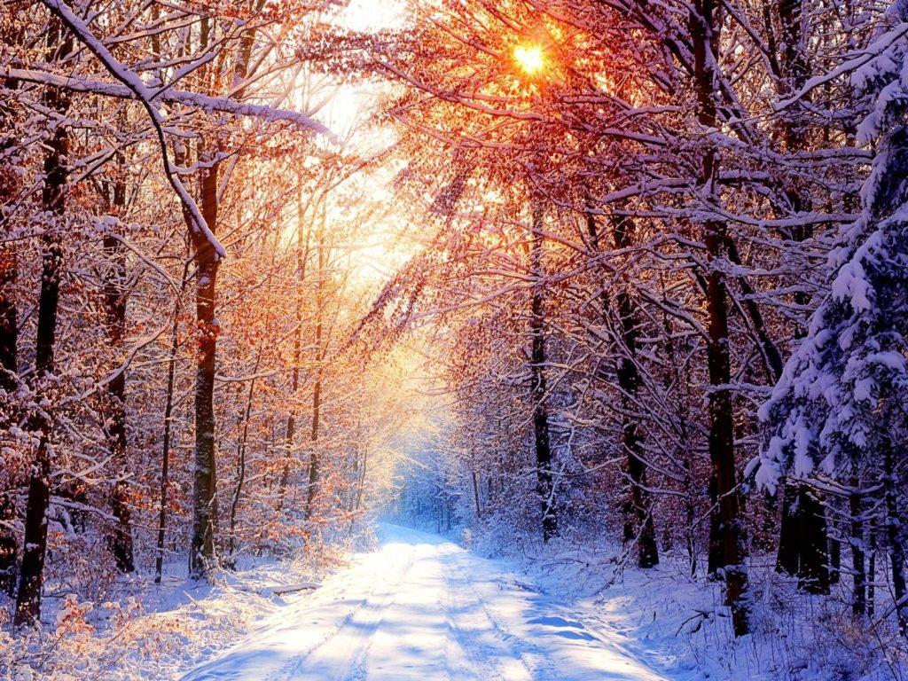 10 Best Winter Wonderland Desktop Background FULL HD 1080p For PC Background 2018 free download winter wonderland desktop wallpapers gallery 68 plus pic 1024x768