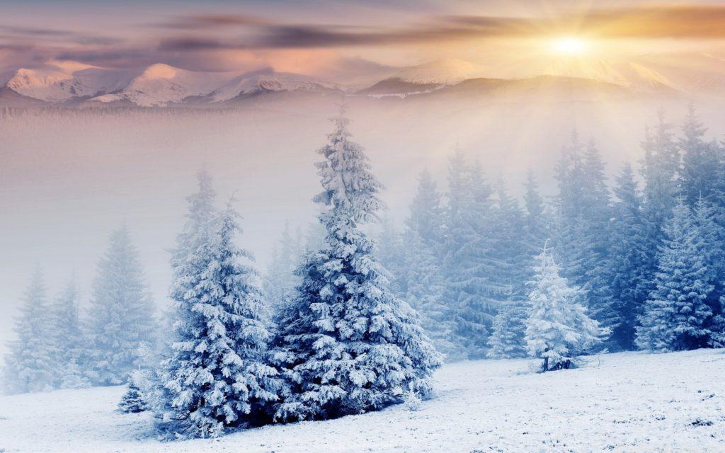 10 Best Winter Wonderland Desktop Background FULL HD 1080p For PC Background 2018 free download winter wonderland e29da4 4k hd desktop wallpaper for 4k ultra hd tv 1 1024x640