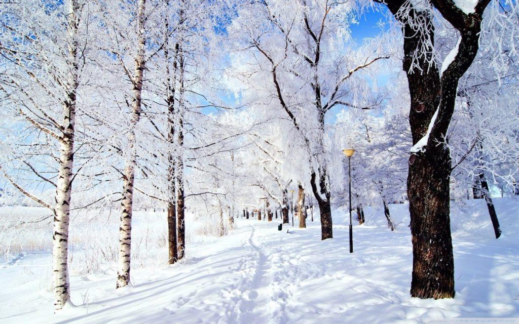 10 Best Winter Wonderland Desktop Background FULL HD 1080p For PC Background 2018 free download winter wonderland e29da4 4k hd desktop wallpaper for 4k ultra hd tv 1024x640
