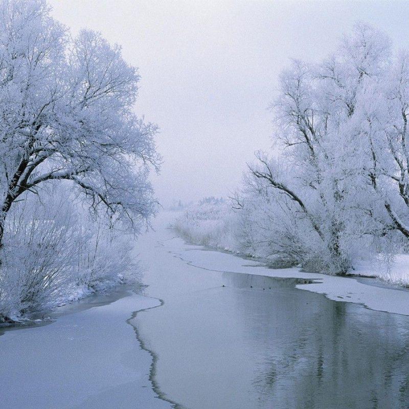 10 Latest Winter Wonderland Screensavers Free FULL HD 1920×1080 For PC Desktop 2021 free download winter wonderland google search winter pinterest wallpaper 800x800