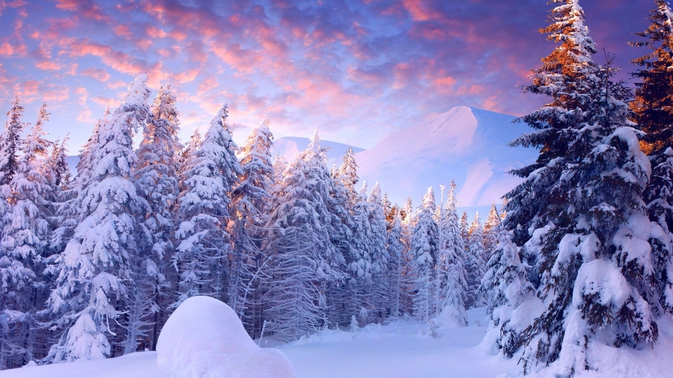 winter wonderland wallpaper and background image | 1366x768 | id:448940