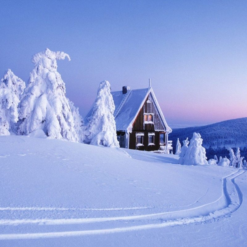 10 Latest Winter Wonderland Screensavers Free FULL HD 1920×1080 For PC Desktop 2018 free download winter wonderland wallpaper c2b7e291a0 download free stunning wallpapers 800x800
