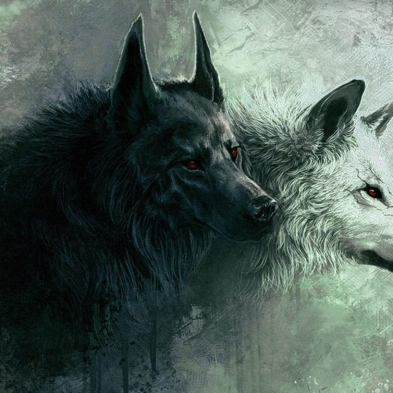 10 Best Cool Wolf Wallpaper Hd FULL HD 1920×1080 For PC Background 2018 free download wolf e29da4 4k hd desktop wallpaper for 4k ultra hd tv e280a2 tablet 1 800x800