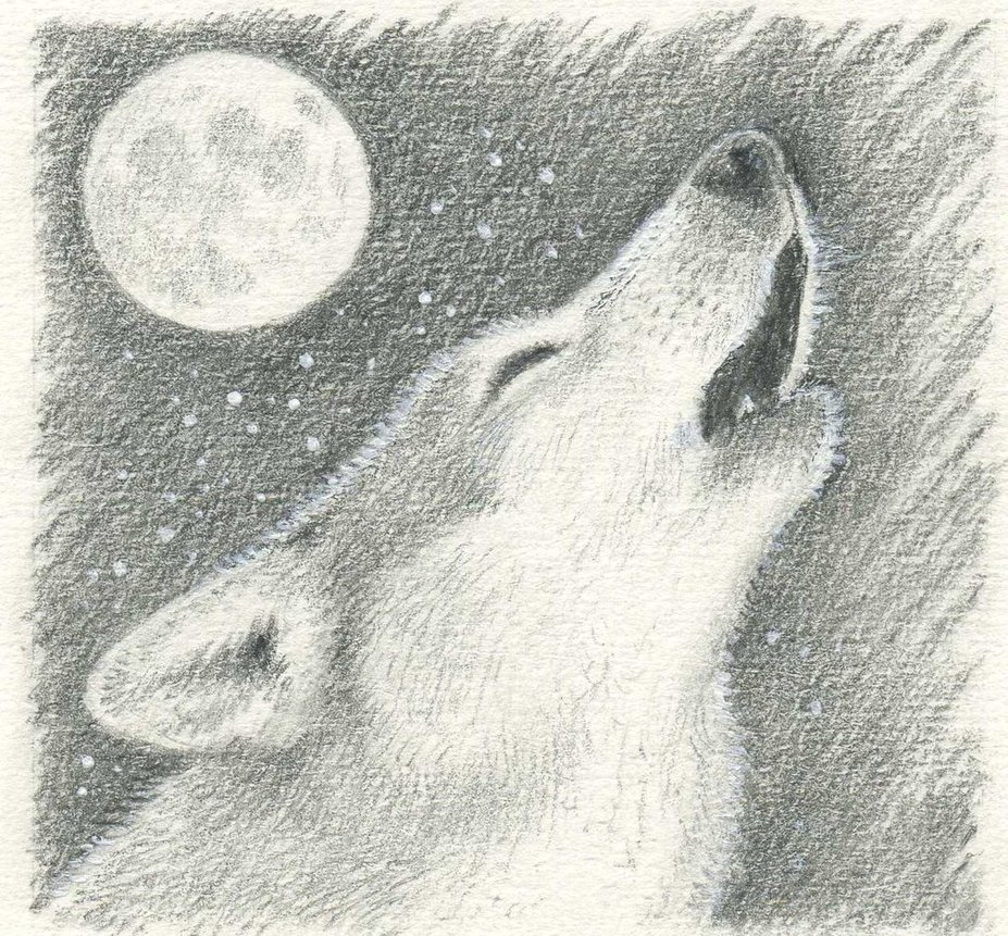 wolf howling at moonpheonix2and2 on deviantart