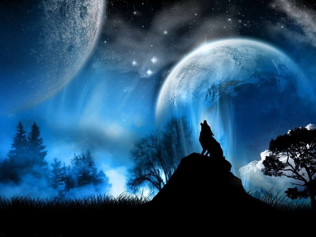 wolf howling at the moon | image - wolf howling at moon