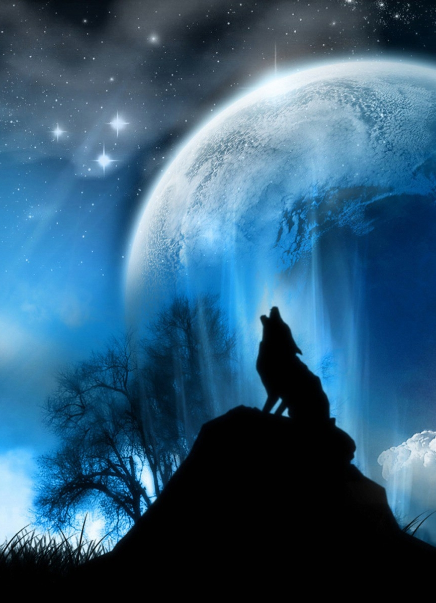 wolf howling at the moon | painting ideas | pinterest | wolf howling