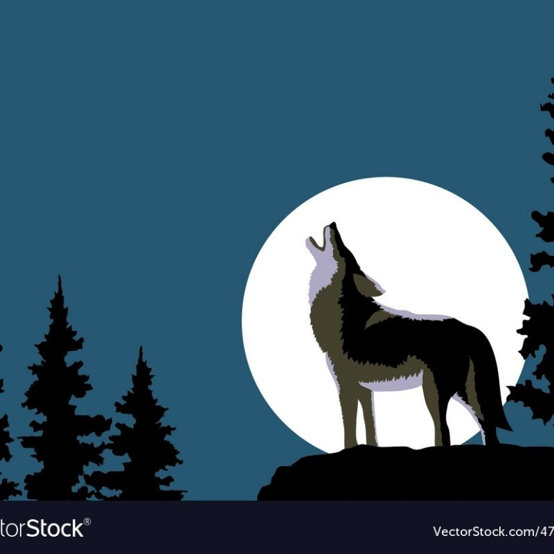10 Most Popular Pics Of Wolves Howling At The Moon FULL HD 1920×1080 For PC Desktop 2018 free download wolf howling at the moon royalty free vector image 800x800