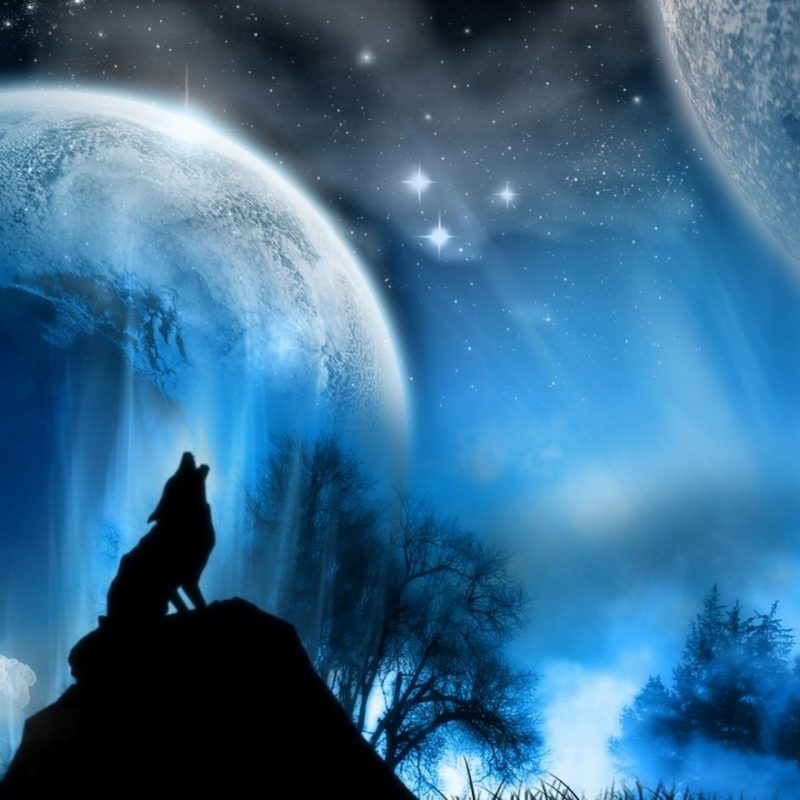 10 New Wolf Howling At The Moon Wallpaper Hd FULL HD 1080p For PC Background 2021 free download wolf howling at the moon wallpaper 66 images 800x800