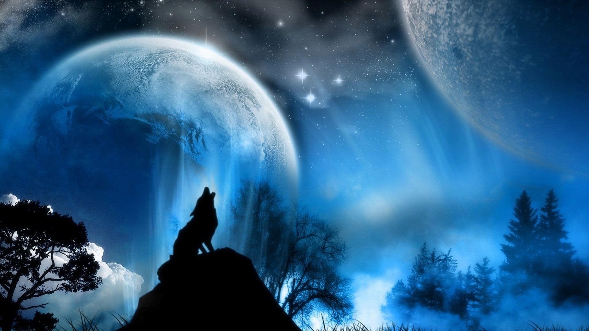 wolf howling at the moon wallpaper (66+ images)